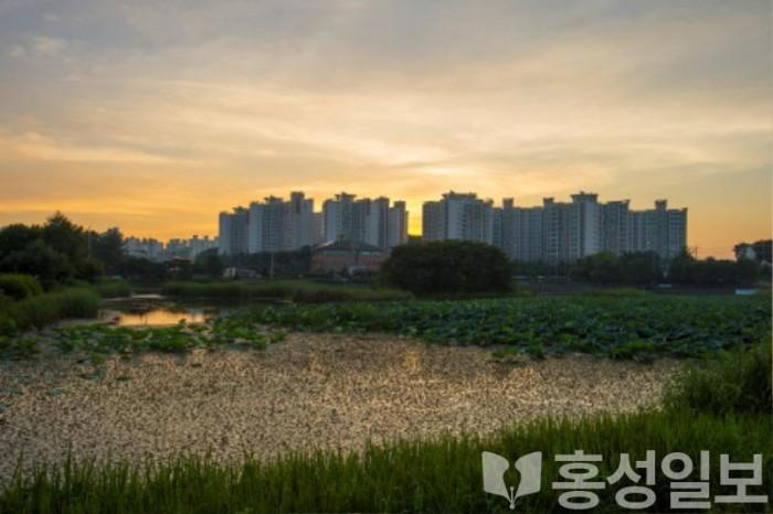 22일 (홍성군, 농업용 저수지 35개소 안전점검 실시_역재방 저수지 전경).jpg