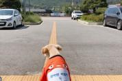 금마면 출·퇴근하는 강아지직원 '금순이', 새 옷 생겼다